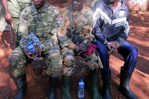 scores of civilians freed from africa rebel group